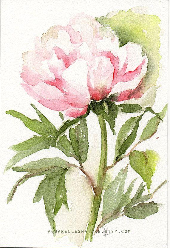 Grand Meres Aquarelle And Fleur Watercolor Flowers Floral