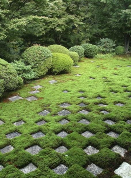 moss and paver checkerboard paysages pinterest jardins beaux jardins et jardins urbains. Black Bedroom Furniture Sets. Home Design Ideas