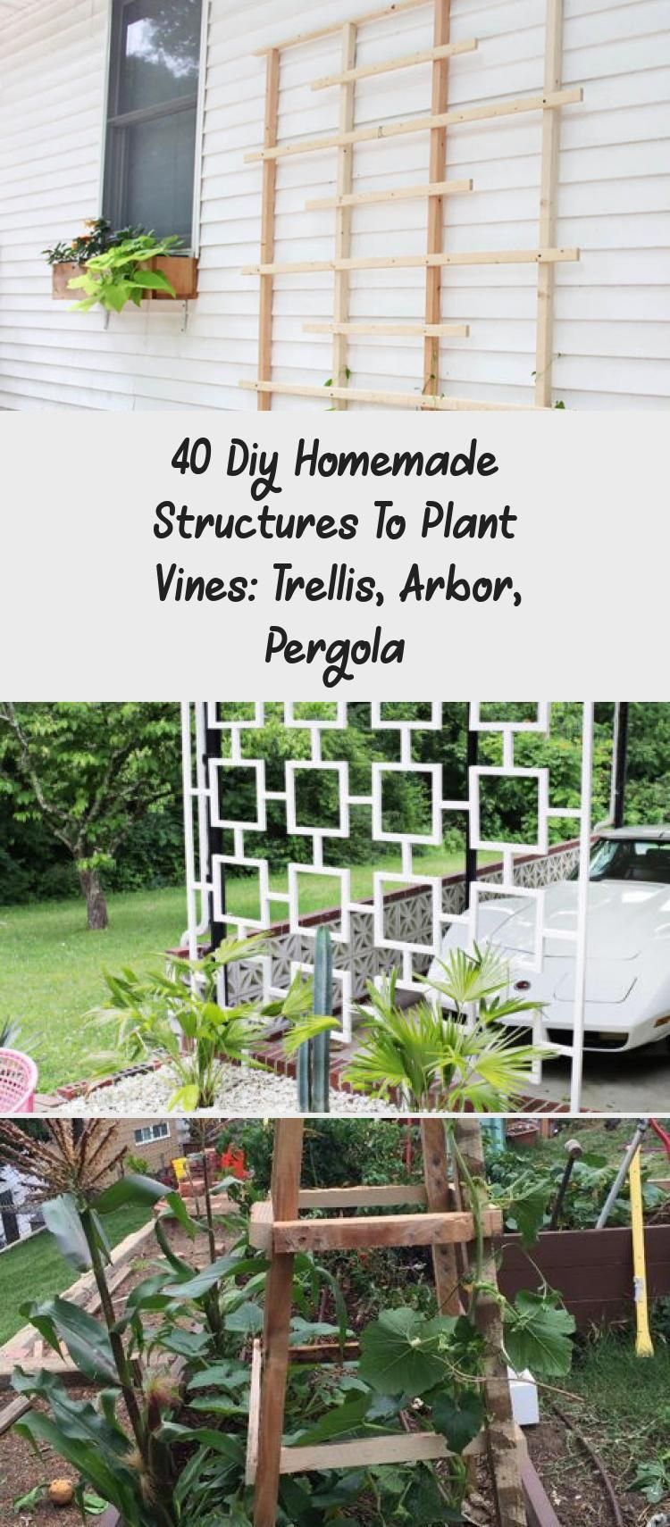 40 Diy Homemade Structures To Plant Vines Trellis Arbor Pergola  Decor Good Idea to Close the Opening Under the Deck Off for Safety And Purpose Wood Framed Wire Trellis