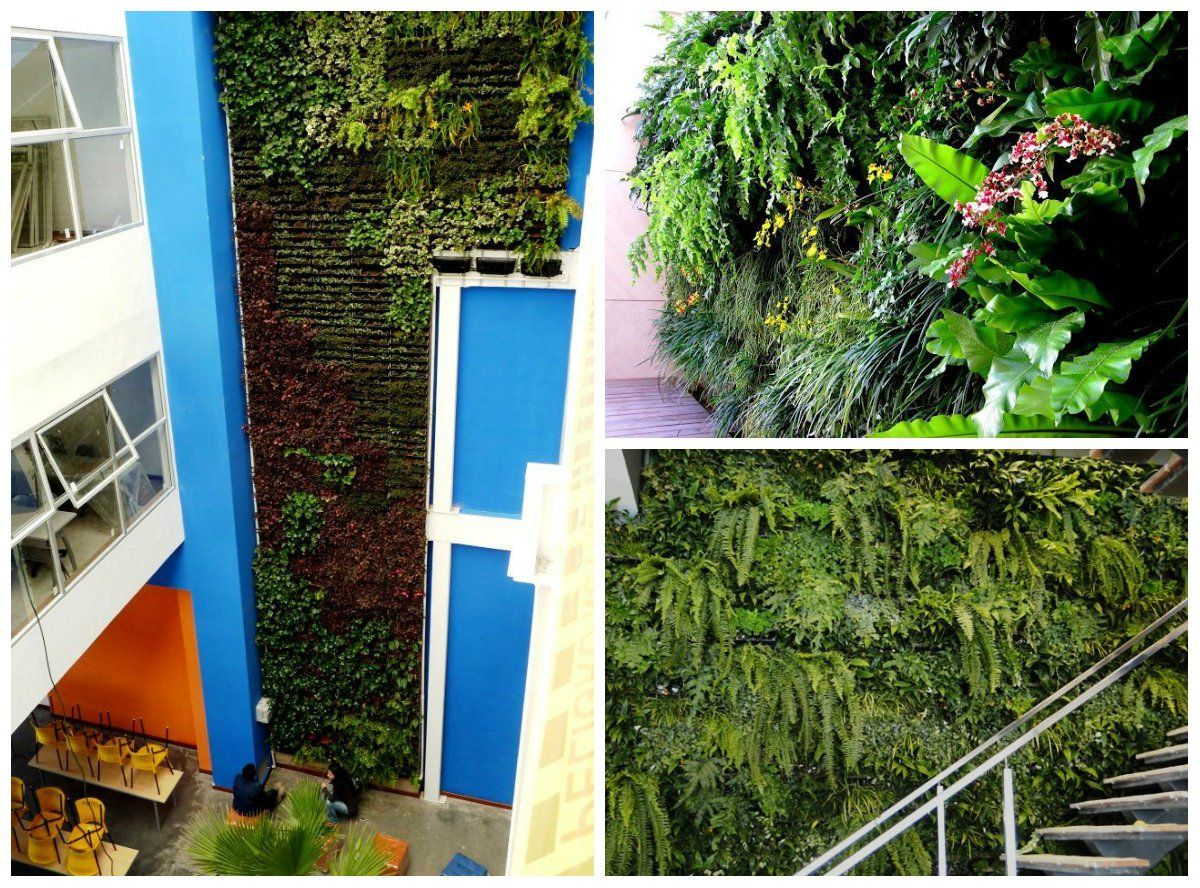 Agora ficou mais fácil ter um jardim vertical em casa. A empresa Ecotelhado lançou um kit que permite a montagem de uma parede verde em casa e em pequenos espaços.