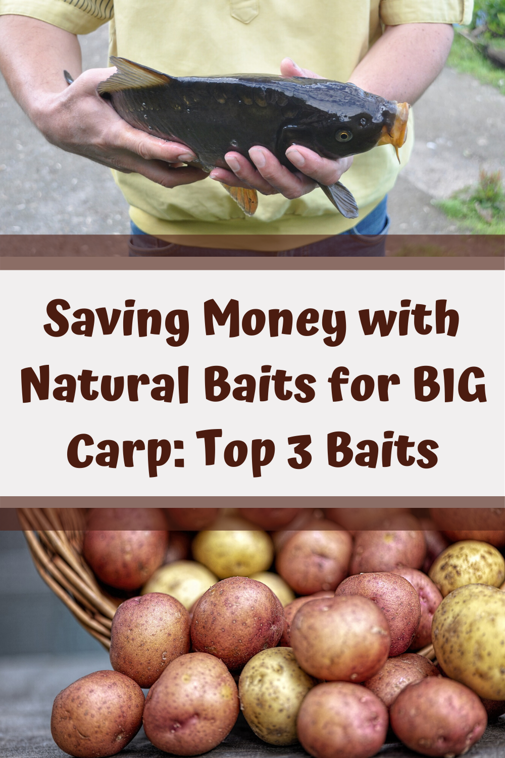MOST CARP BAIT is EXPENSIVE! But, CARP FISHING is AMAZING. Hence, there needs to be a way to FISH FOR CARP IN A CHEAP MANNER. That's what this article is for! It'll show you how