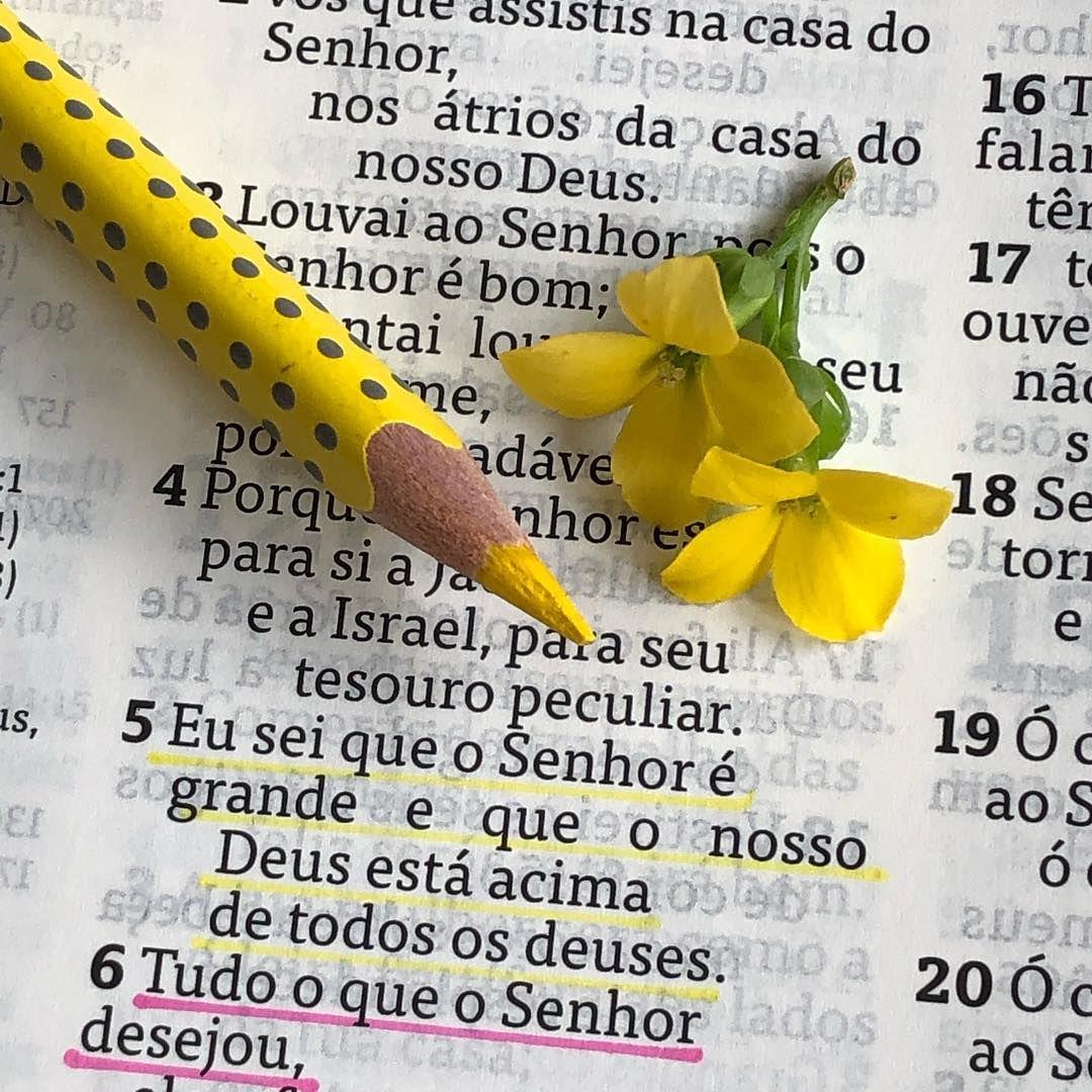 Diariocomdeusoficial On Instagram Salmos 135 5 6 Somos