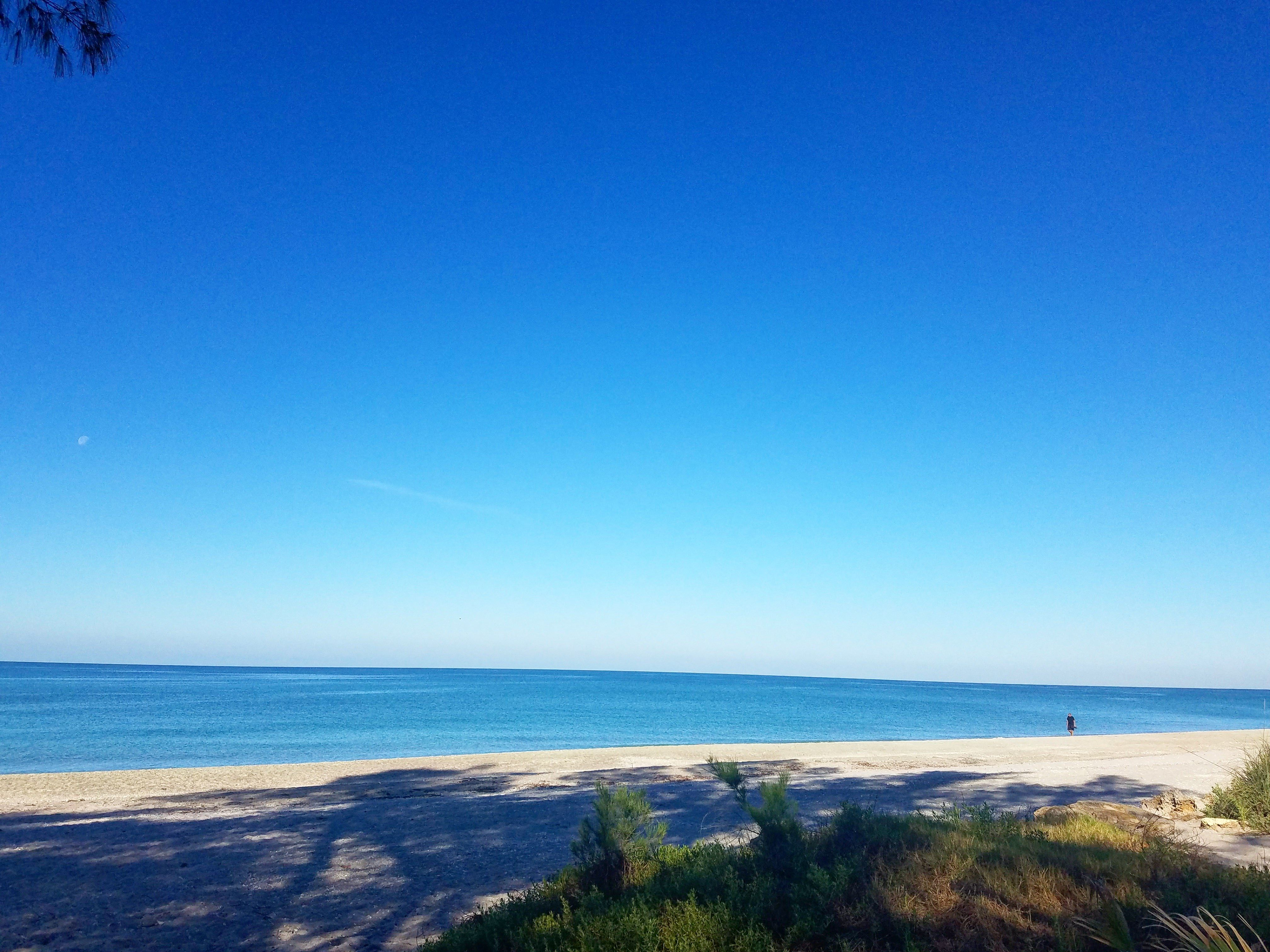 Good morning from Manasota Key! #lovefl (With images ...