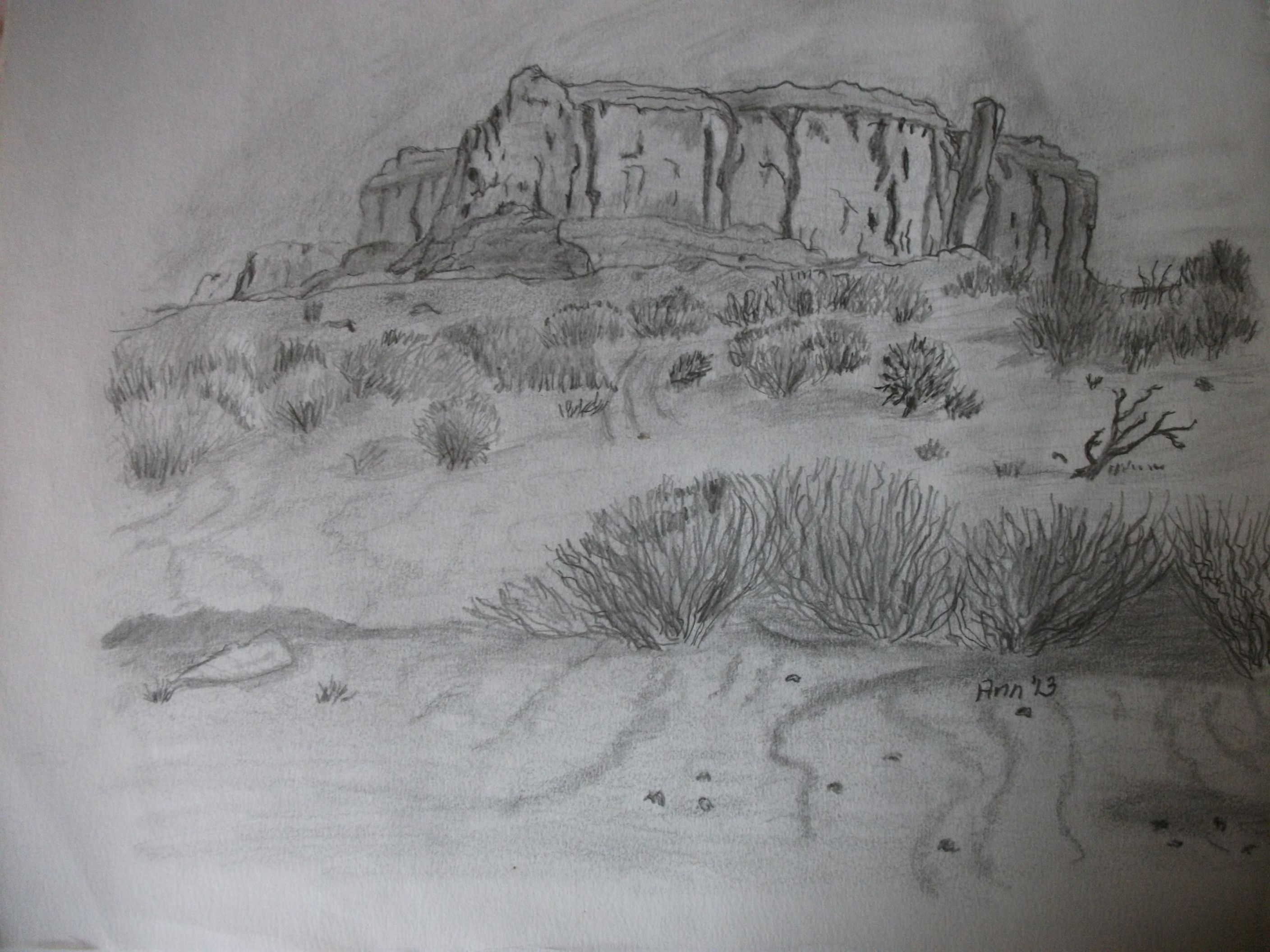It is an image of Lively Desert Scene Drawing
