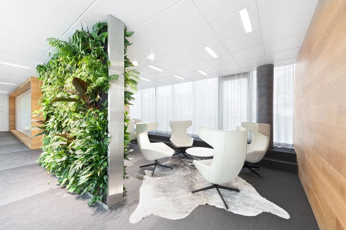 View full picture gallery of KKCG  Office plants, Plant office