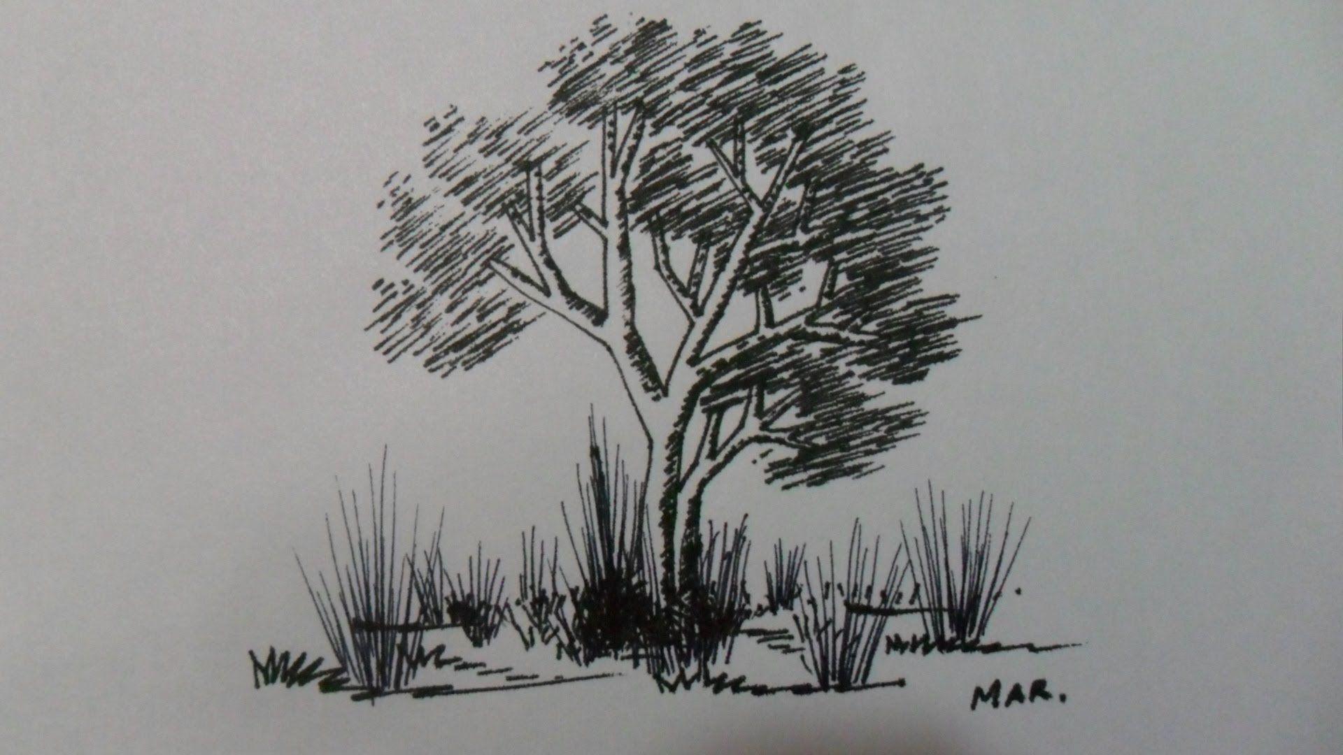 Complemento De Leccion Nº 1 3 3 Solo Rectas Como Dibujar Un Arbol Usando Solo Lineas Rectas Dibujos De Arboles Dibujos Arboles Abstractos