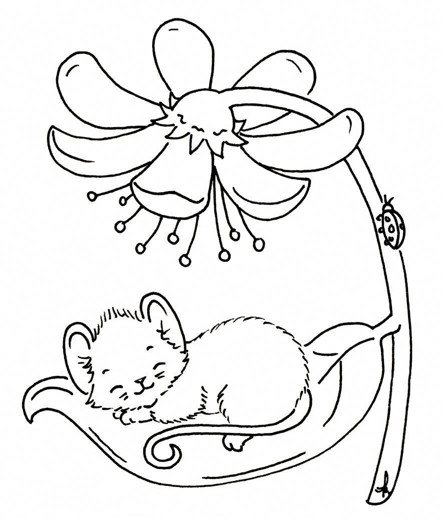 Embroidery Hoop Ikea Embroidery Patterns Printable Pinterest