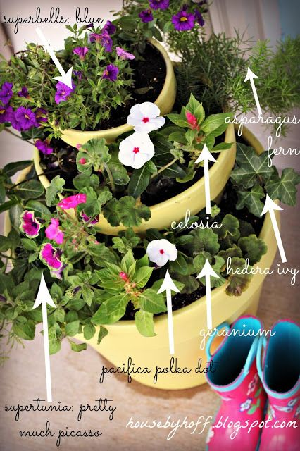 A three-tiered summer planter. {Includes names of all the flowers that do well in full sun!}