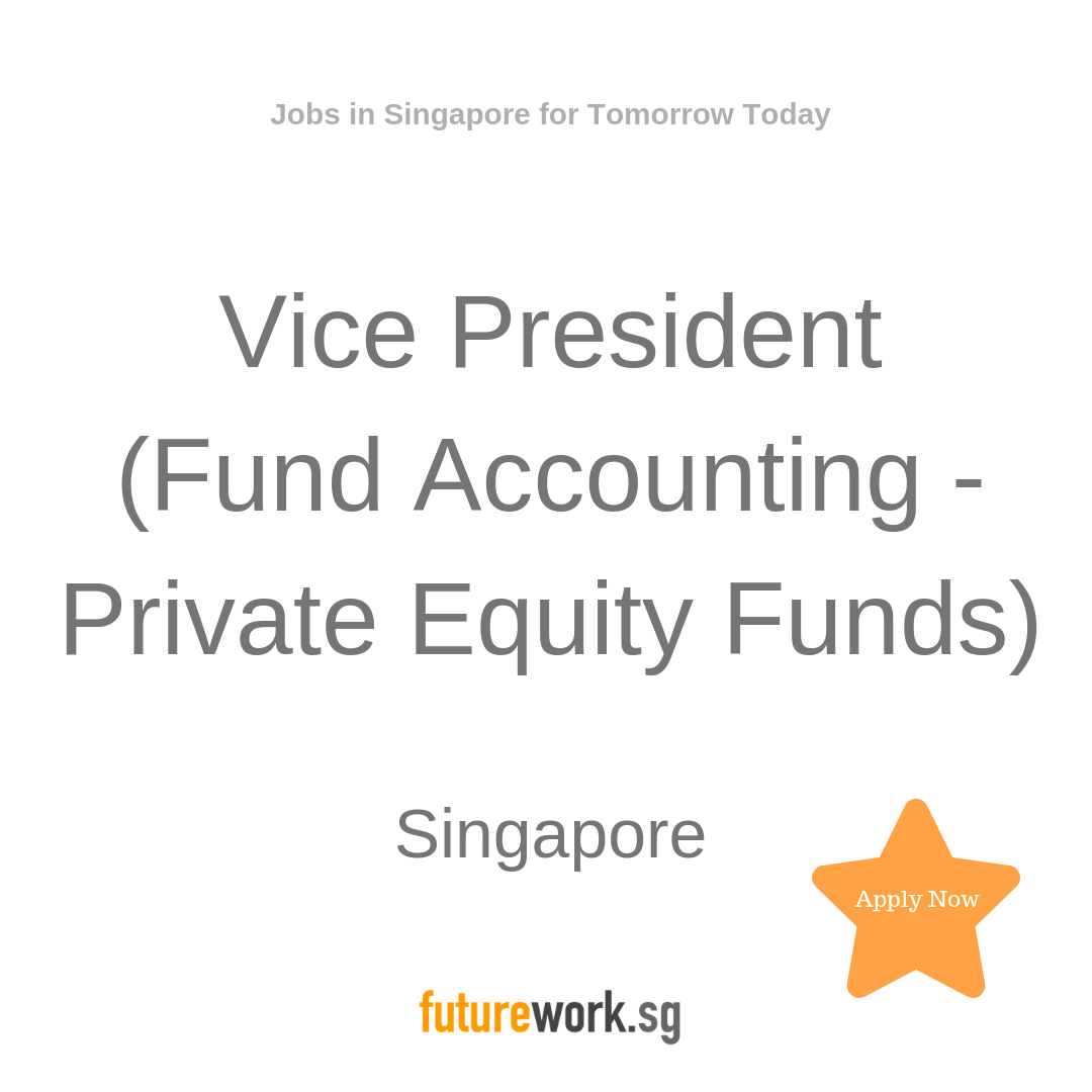 Vice President (Fund Accounting Private Equity Funds