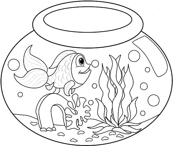 Long Tailed Fish In Fish Bowl Coloring Page Download Print Online Coloring Pages For Fr Kindergarten Coloring Pages Fish Coloring Page Fruit Coloring Pages