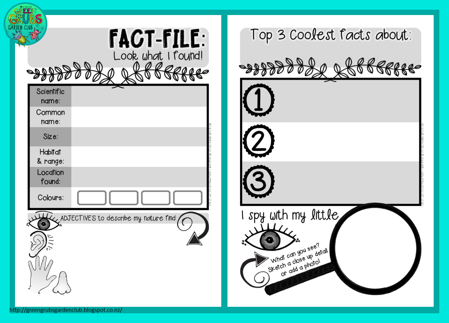Great Free Fact Sheet Template Contemporary - Entry Level Resume ...