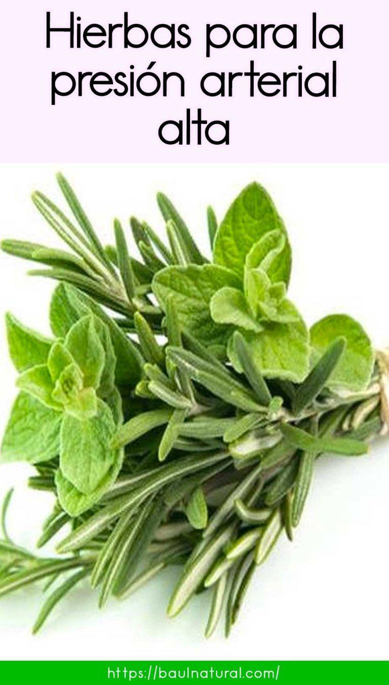 Hierbas Para La Presión Arterial Alta Natural Remedies For Heartburn Daily Health Tips Good Health Tips