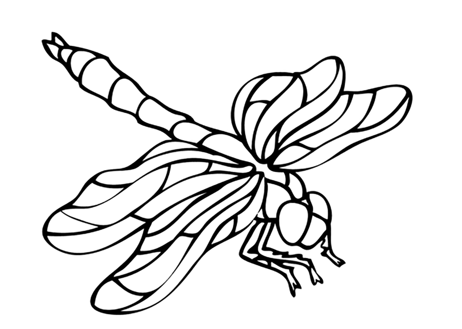 Insects To Print Simple Free Insects Coloring Page To Print And Color From The Gallery Insec In 2020 Insect Coloring Pages Coloring Pages Printable Coloring Pages