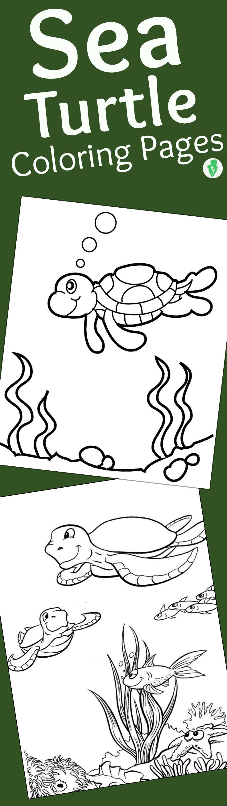 Top 10 Free Printable Cute Sea Turtle Coloring Pages Online | Turtle ...