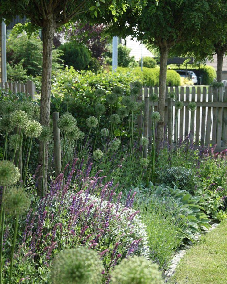 Photo of Layered garden