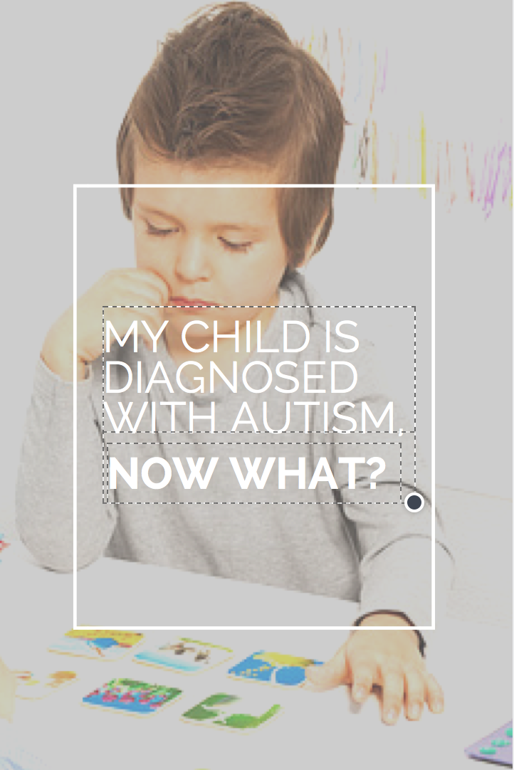 After my boys were diagnosis with PDD, I began reading everything I could on Autism. The place I started was the book Autism Spectrum Disorder (revised): The Complete Guide to Understanding Autism.