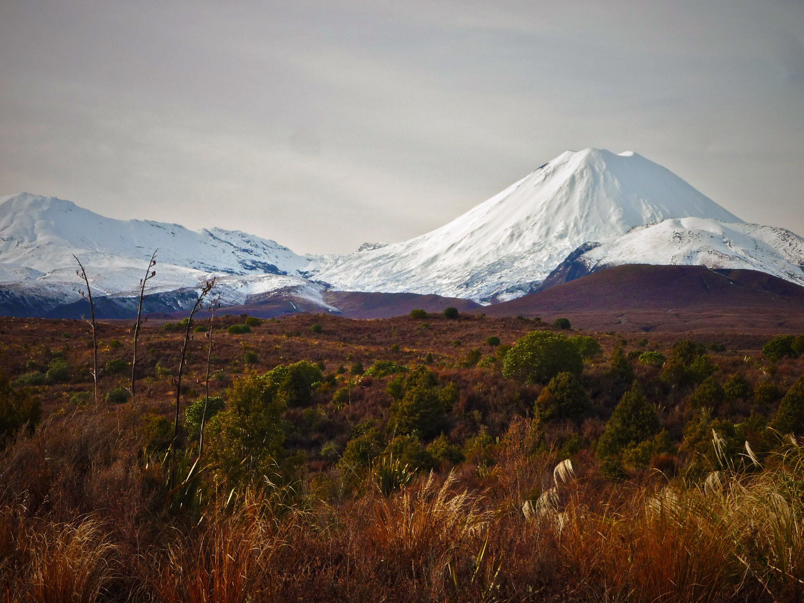 New Zealand Natural landmarks, Wilderness, Around the worlds
