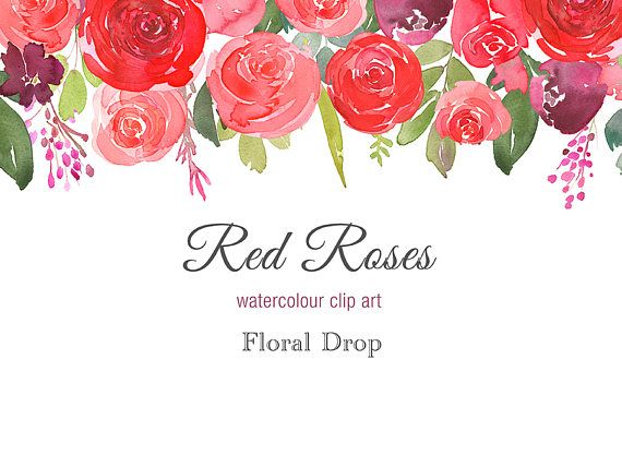Hand Painted Floral Watercolour Clipart Red Roses Floral Drop