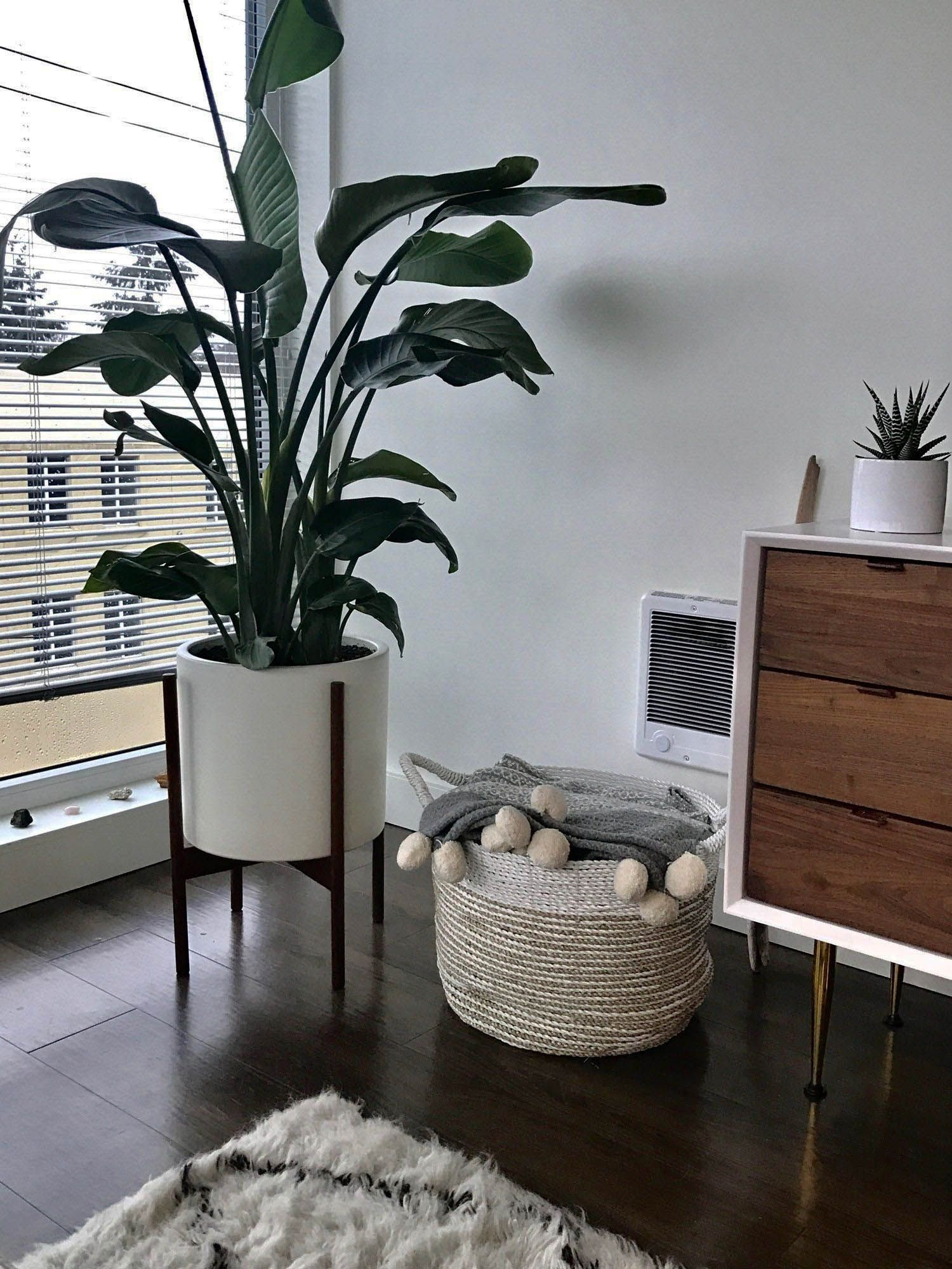 . Stunning Low budget small apartment living room ideas pinterest you