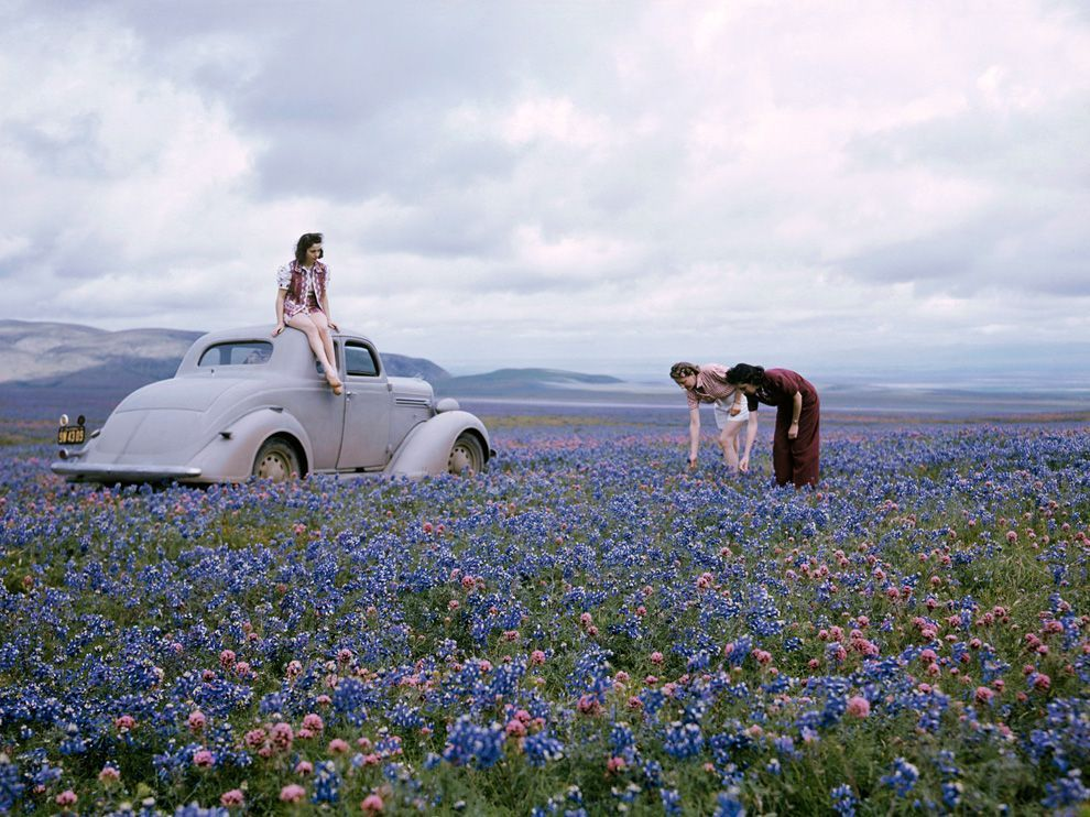 Wildflowers, California  Photograph by B. Anthony Stewart, National Geographic In this picture from the early 1940s, travelers in California's San Joaquin Valley gather owl's clover and blue lupine in a field along Route 99. The photo originally accompanied a 1942 feature story on California's abundant wildflowers.