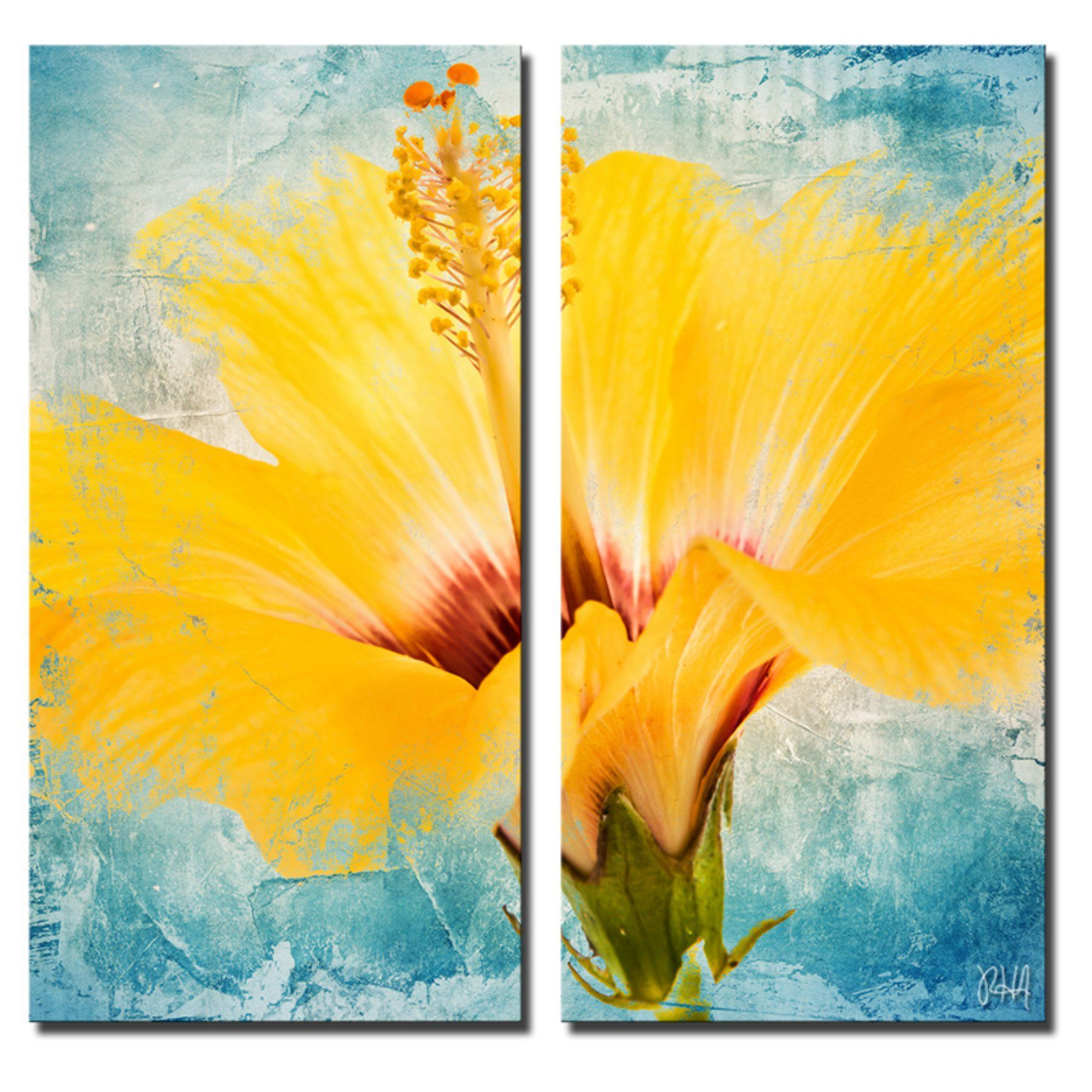 Ready2HangArt Painted Petals XVII Canvas Wall Art - 2 pc. Set - PP17 ...