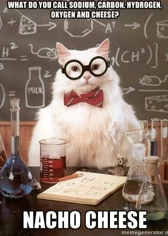 Nacho Cheese I Love You Chemistry Cat Chemistry Jokes
