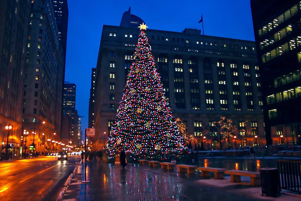 Christmas Tree Downtown Chicago.Photo Chicago S Daley Plaza At Christmas Everyone S