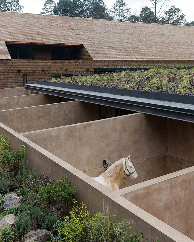 The Equestrian Facilities Are Sunk Into The Ground To