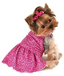 Short Yorkie Cut With Top Knot This Is Exactly What I Want Minnies