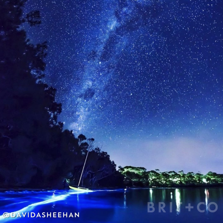Watch this video to learn about the magical Mosquito Bay in Puerto Rico, a bioluminescent sparkling bay, is the Northern Lights of the sea. Time to book a flight and visit this colorful travel destination.