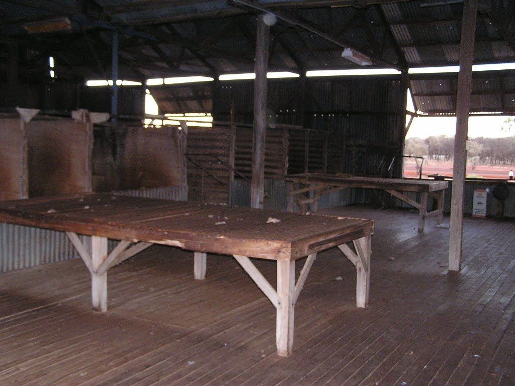 Sorting Table Wool Shed Dynevor Qld Table Dining Table