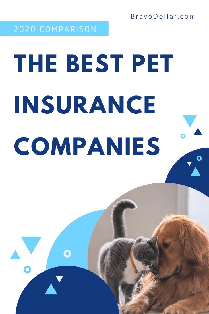 The Best Pet Insurance Companies For 2020 Pet Insurance