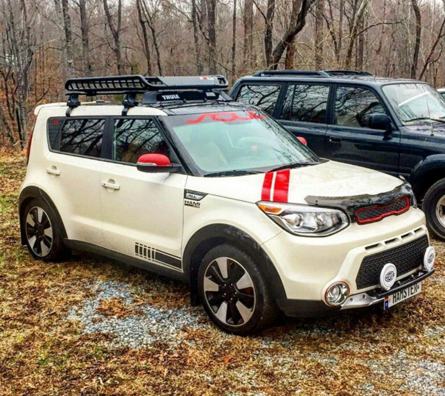 Pin By Sheila Faubus Machtolf On My Whip Kia Soul 2015