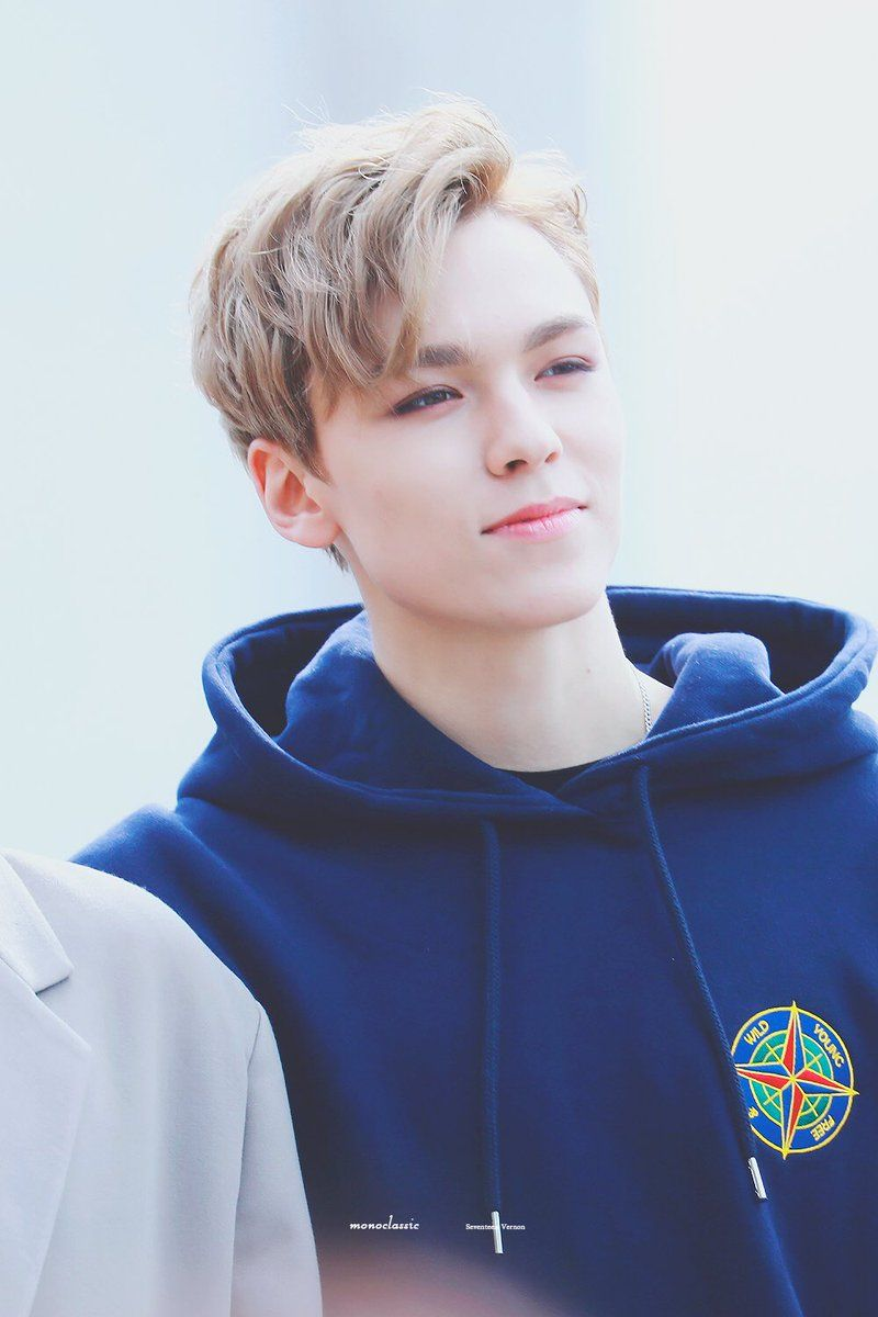 List of Synonyms and Antonyms of the Word: hansol seventeen