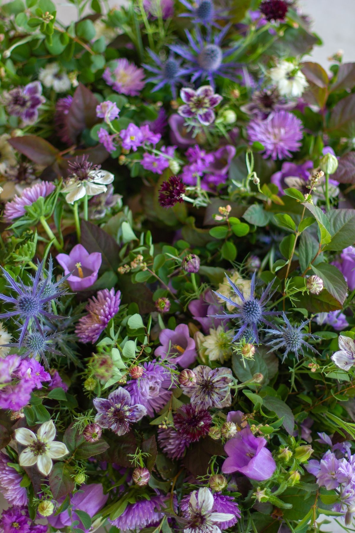 Pin by Katherine Baron on Love 'n Fresh Flowers Flower