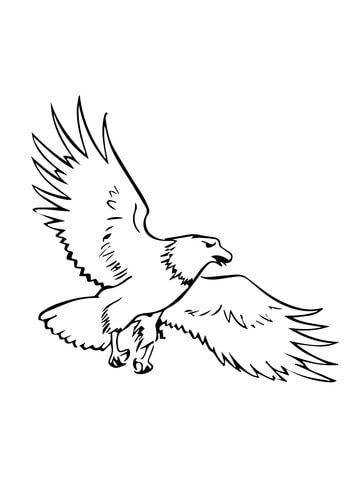 Soaring Bald Eagle Coloring page | Schlaumäuse-Abschied | Pinterest ...