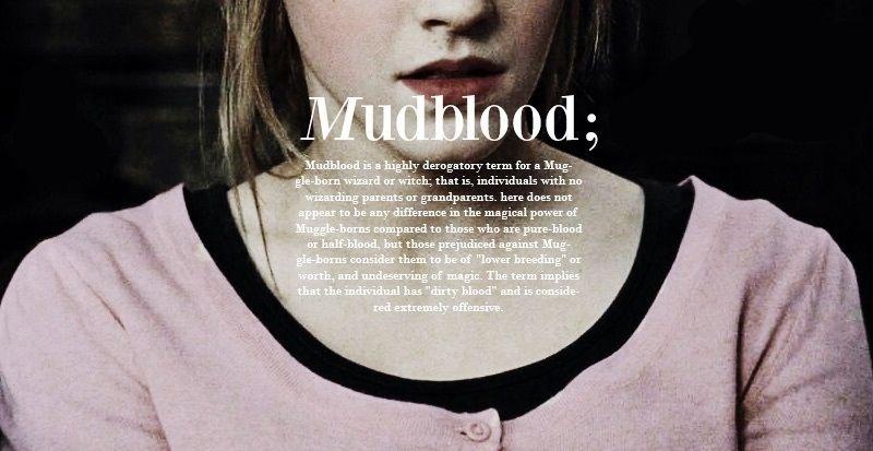 Mudblood Hermione Granger Harry Potter World Harry Potter Universal Harry Potter Obsession
