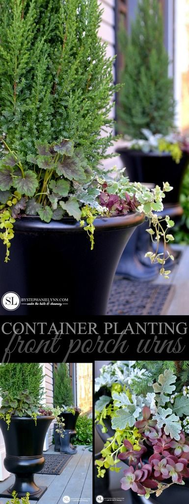 container plantings porch urns
