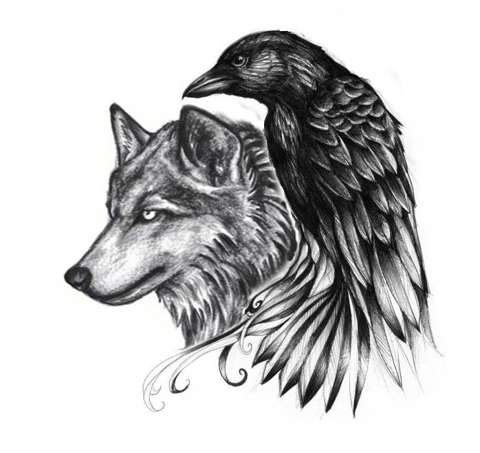 Excellent Wolf And Raven Tattoos Wolf Raven Tattoo Raven And Wolf Wolf Tattoos Raven Tattoo