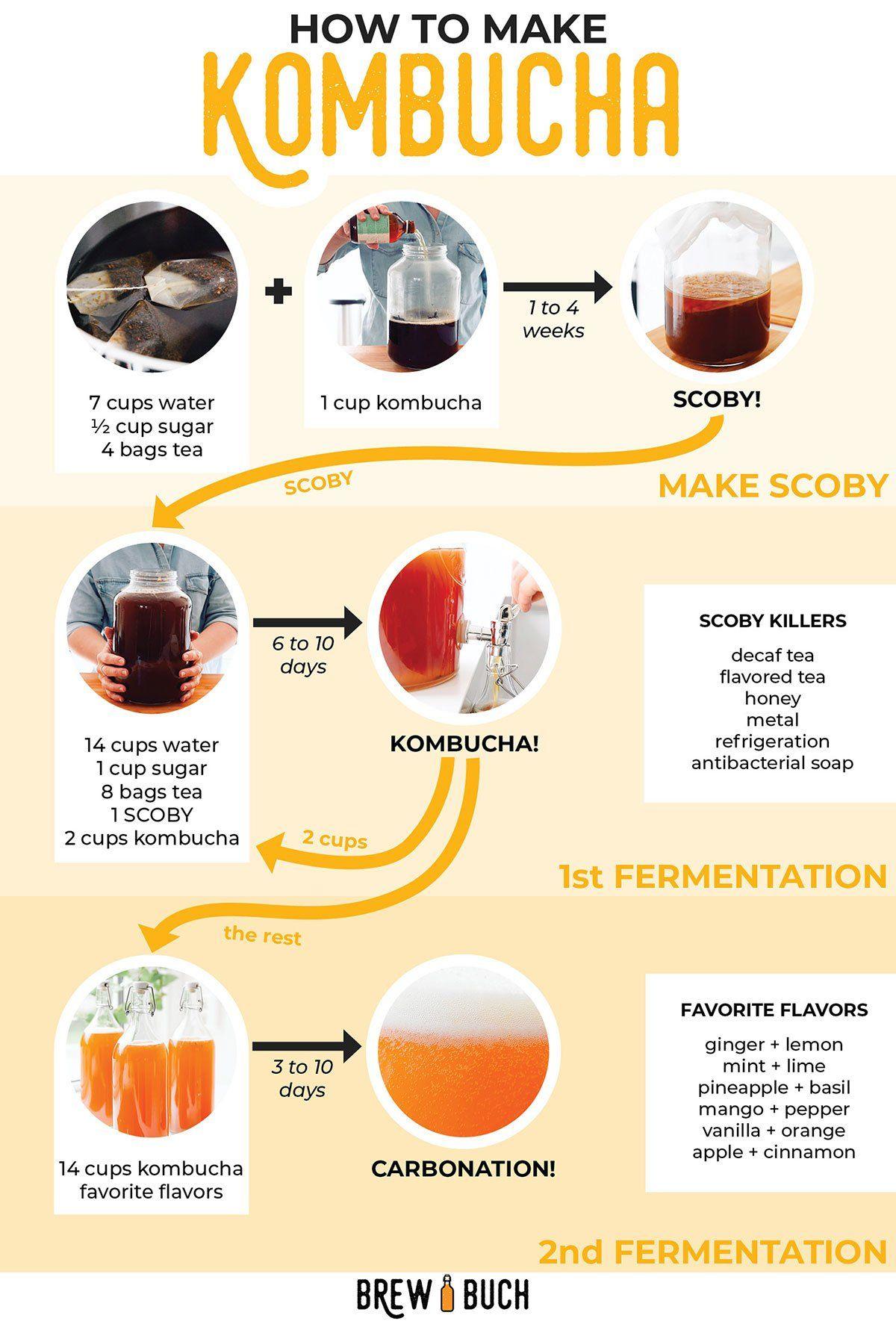 How to Make Kombucha (A Beginners Guide!) Kombucha how