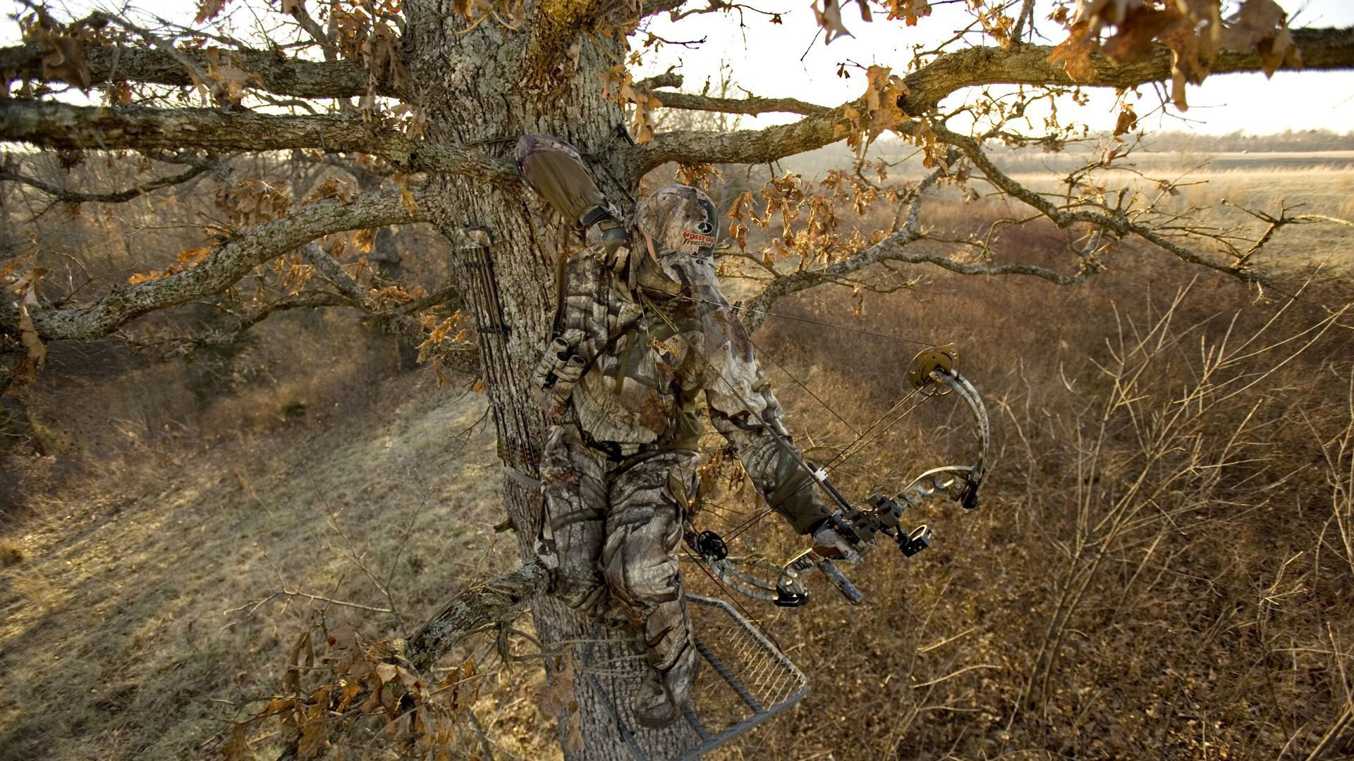 Bow Hunting Wallpaper Mossy Oak Camo Hunting Wallpaper