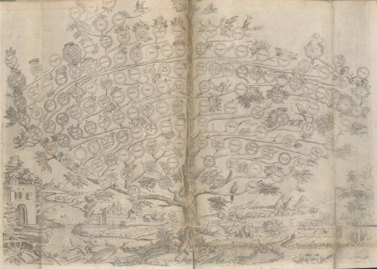 """""""Image Title:  Family Tree. Additional Name(s): Ammirato, Scipione, 1531-1601 Author Ammirato, Scipione, b. ca. 1582 -- Editor Item/Page/Plate: btw. p. 95 and 96 Source: Delle Famiglie Nobili Napoletane Source Description: 2 v. geneal. tables. 40, 32 cm. (fol.) Location: Stephen A. Schwarzman Building / Rare Books Division Catalog Call Number: *KB+ 1580 (Ammirato, S. Delle Famiglie Nobili Napoletane) Digital ID: 2020706 Record ID: 1947802 Digital Item Published: 5-31-2011; updated…"""