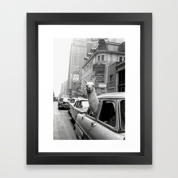 3,379 Llama Riding in Taxi, Black and W FRAMED ART PRINT Best selection of collage, abstract, modern, nature, funny, pink, black and white, vintage pictures, hippie and trippy framed art prints for DIY aesthetic decor. Ideas for guys or girls design for campus living in the bedroom, living room or college dorm room. Horizontal, vertical, small, medium or extra large #dormroomdecor #artprint #wallart #collegedorm