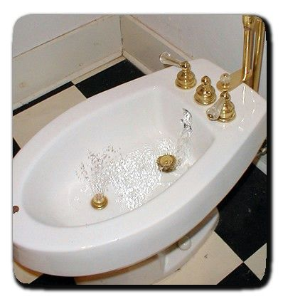 Bidet I Was Introduced To Them In Europe And Now I Have One In
