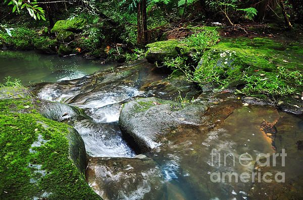 #PRETTY #GREEN #CREEK - #Nature #Prints & G/Cards available at:  http://kaye-menner.artistwebsites.com/featured/pretty-green-creek-kaye-menner.html  -