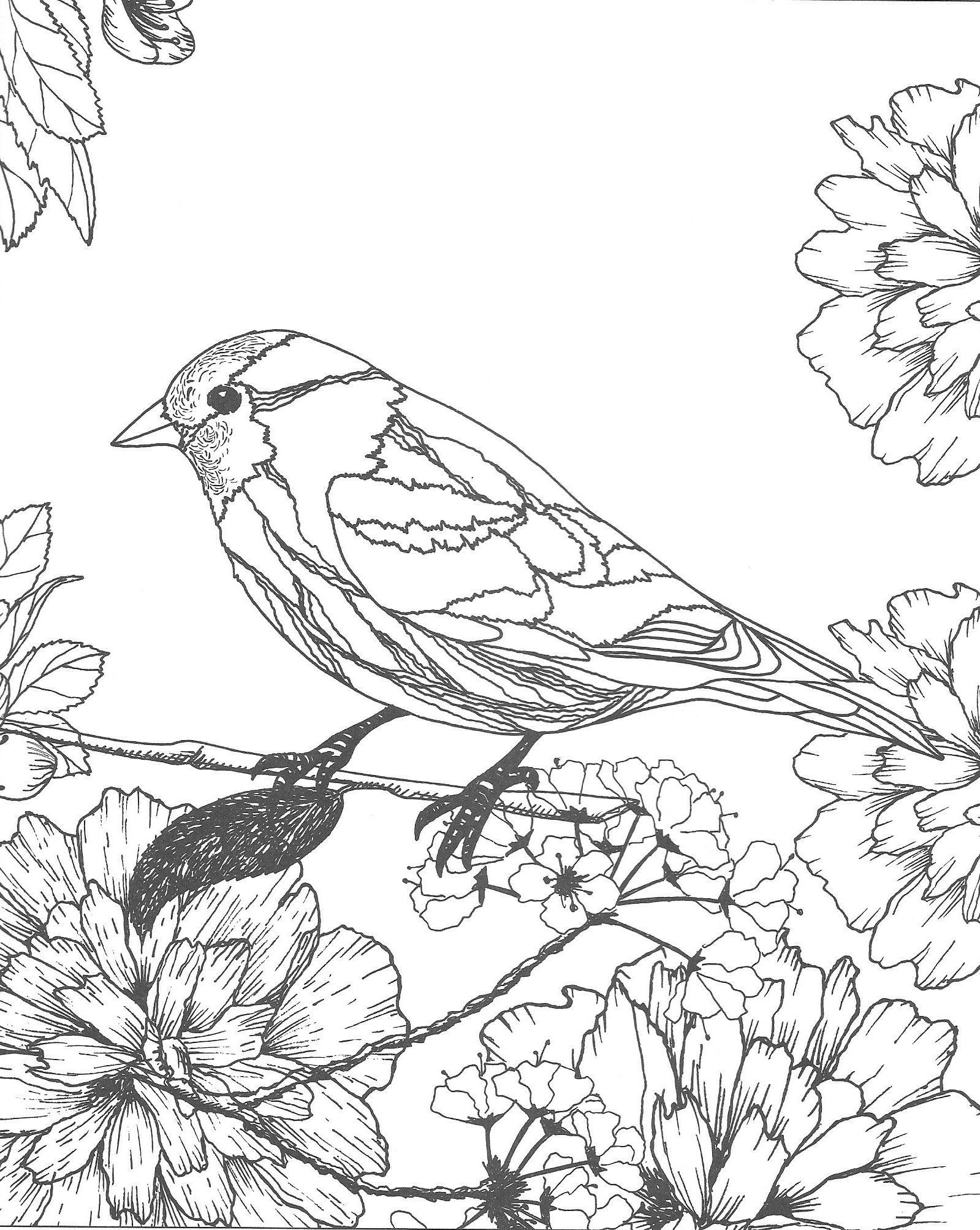 Malvorlagen #ColoringPages #Vogel #Bird #Flowers #Blumen ...