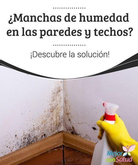 Manchas De Humedad En Las Paredes Y Techos Descubre La Solucion Descubre Como Eliminar Las Manc Trucos De Limpieza Consejos De Limpieza Recetas De Limpieza