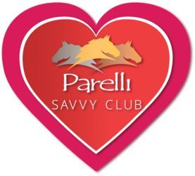 Parelli Savvy Club How Do You Use It Horse Lover Savvy