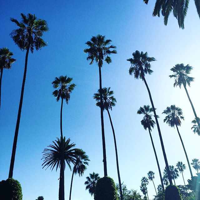 On a grey Tuesday afternoon... I cherish moments like these  Whoelse is dreaming of blue skies and palm trees??  #takemeback #losangeles #eyeontheprice #fashionablefitlifestyle
