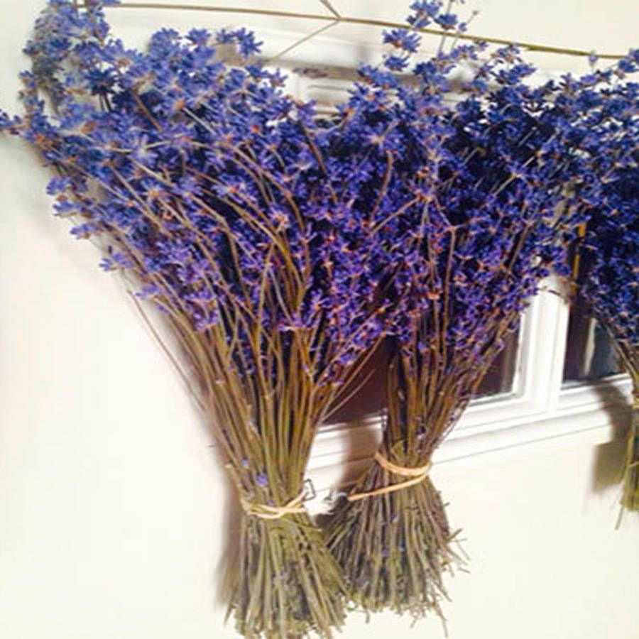 Stunning English Lavender Dried From Kent Great As A Gift For Christmas Birthday